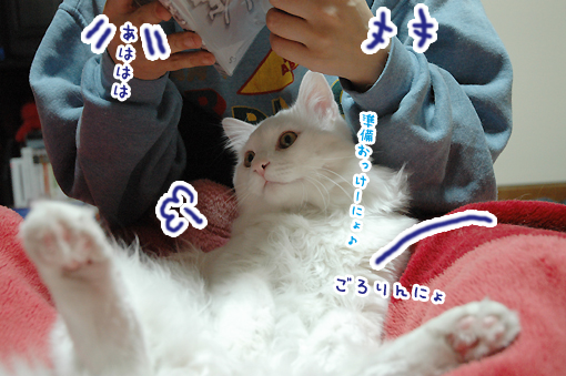 02_20090302184727.jpg
