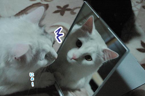 02_20090314013050.jpg