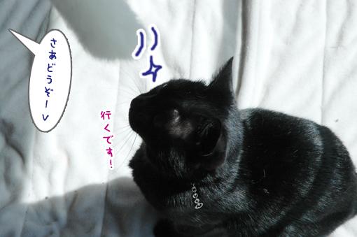 03_20090317005747.jpg