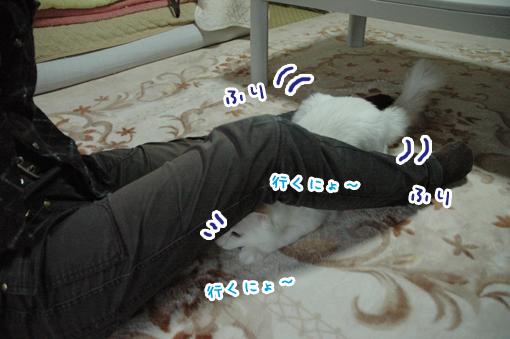 03_20090505211212.jpg