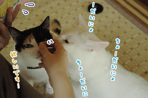 03_20090601225714.jpg