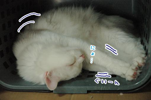 03_20090621002148.jpg