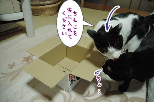 03_20090718001227.jpg