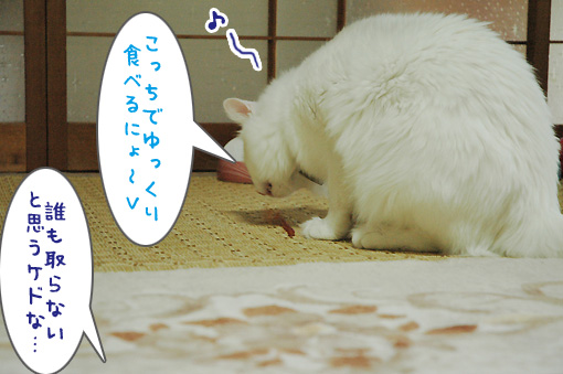03_20090726211903.jpg