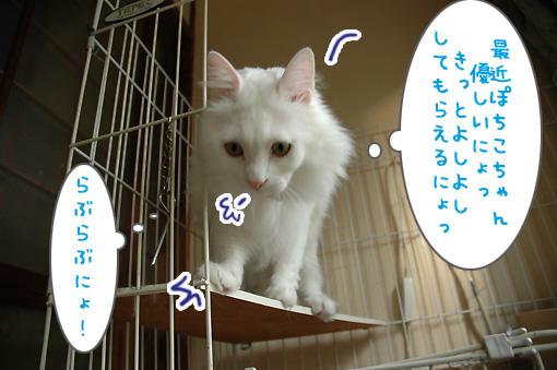 03_20090914000220.jpg