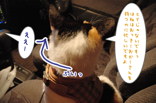 04_20090305233303.jpg