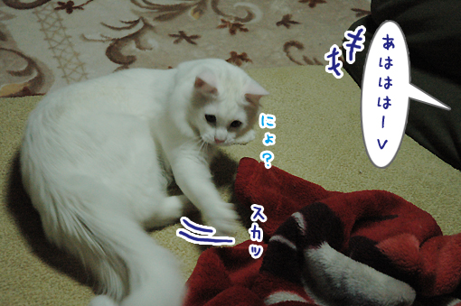 04_20090511231904.jpg