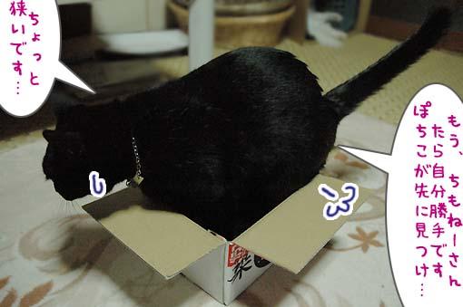 04_20090718001227.jpg