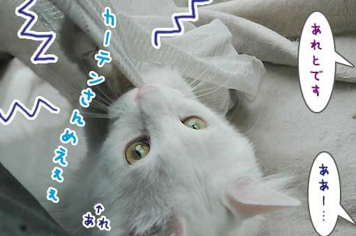04_20090721225124.jpg