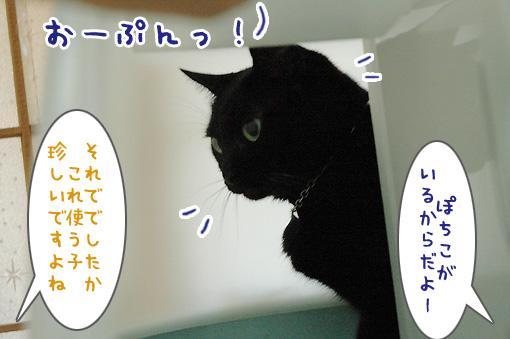 04_20090826001541.jpg