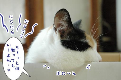 04_20090910000659.jpg