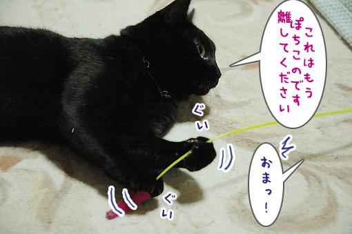 04_20090911002427.jpg