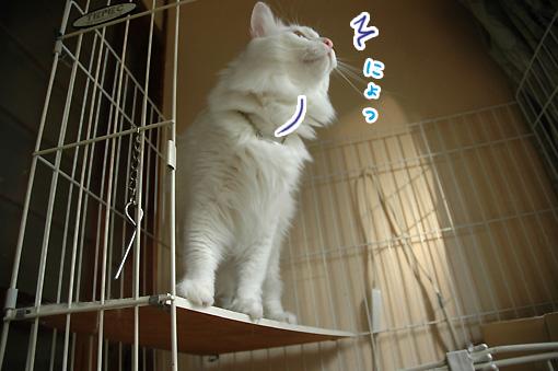 04_20090914000220.jpg