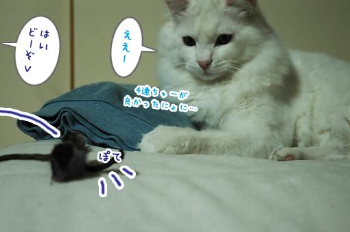 05_20090213002806.jpg