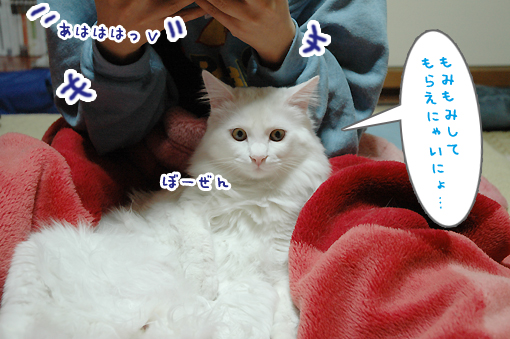 05_20090302184650.jpg
