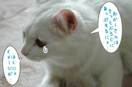 05_20090521021903.jpg
