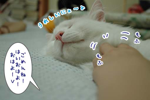 05_20090722233200.jpg