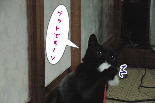 06_20090505211133.jpg