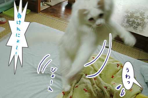 06_20090812150154.jpg