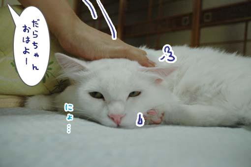 07_20090710170838.jpg