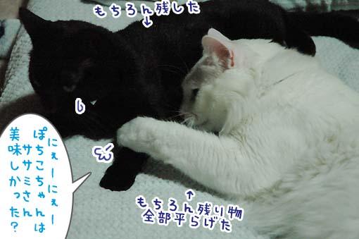 07_20090712000946.jpg