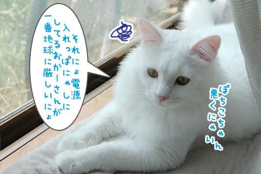 07_20090715003522.jpg