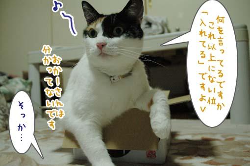 07_20090718001158.jpg
