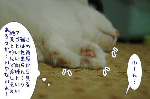 07_20090726023447.jpg