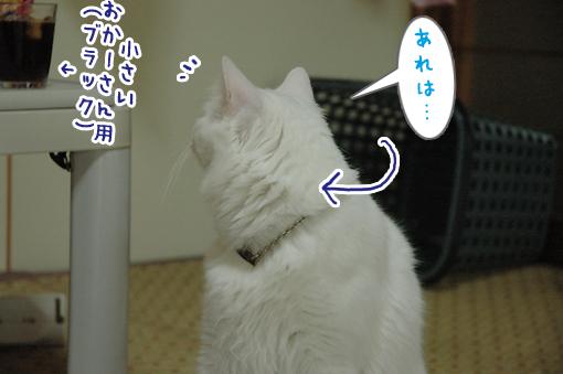08_20090604235313.jpg