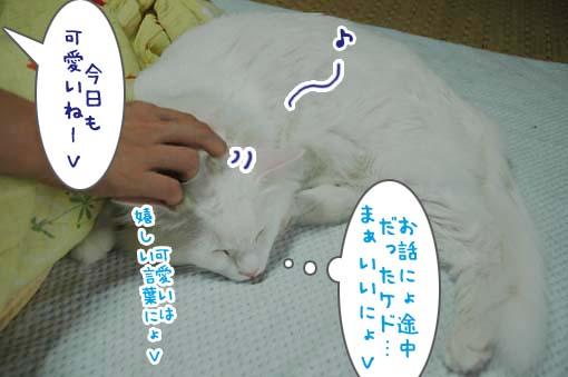 08_20090710170838.jpg