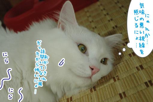 08_20090726023447.jpg