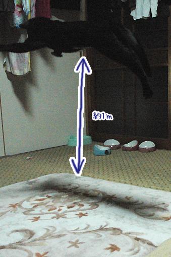 09_20090211032034.jpg