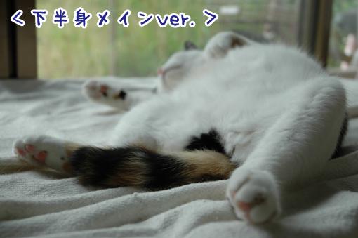 10_20090621213533.jpg