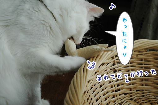10_20090804223458.jpg