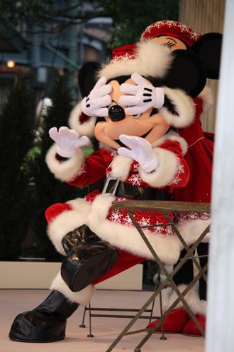 ミッキー・ミニー クリスマスグリ 目隠し
