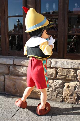 ピノキオ メディテ チェック2