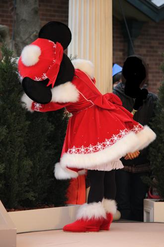 ミニー クリスマスグリ うしろ
