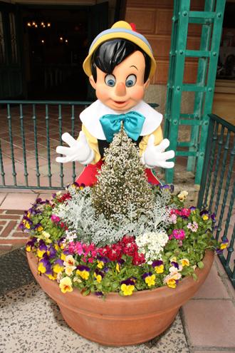 ピノキオ メディテ はな