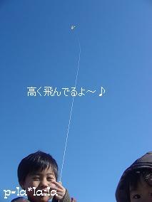 DSC02978.jpg