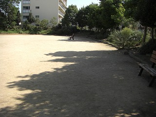 近くの公園。