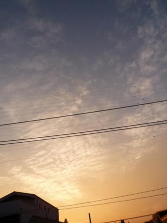 200809255.jpg