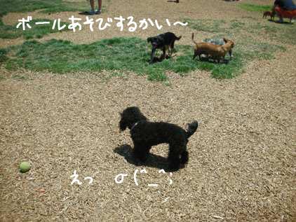ブログ用321-3psd