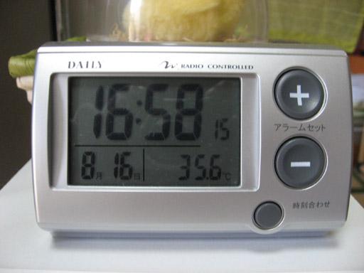 2007summer-01.jpg