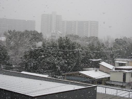2008-feb-01.jpg