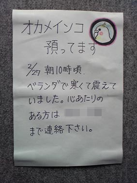 2008-feb-05.jpg