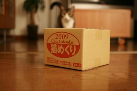20080912_1745.jpg