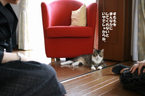 20080915_1806.jpg