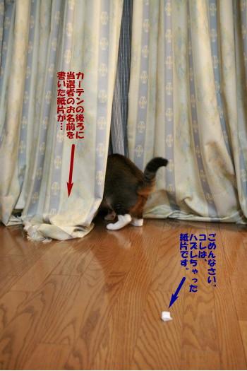 20080922_1943.jpg