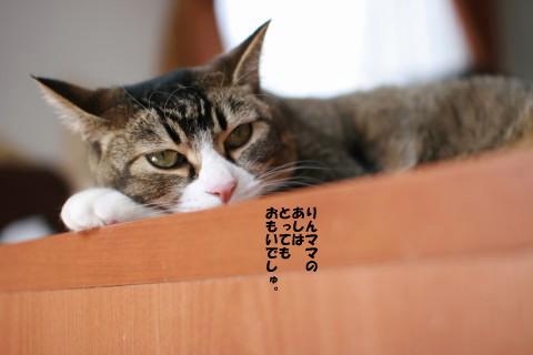 20090307_2613.jpg