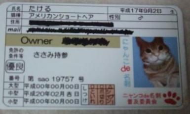 004_20080910013305.jpg